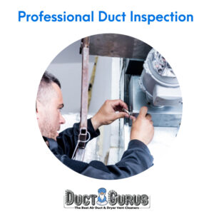 Professional Duct Inspection-1